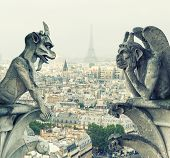 picture of gargoyles  - Stone demons gargoyle and chimera from Notre Dame de Paris - JPG
