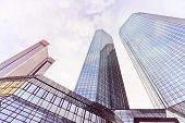 image of frankfurt am main  - modern office buildings in Frankfurt am Main - JPG