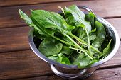 pic of sorrel  - Fresh organic sorrel in bowl on table - JPG