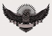 stock photo of eagle  - Illustration of emblem with eagle and arrows - JPG