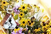 stock photo of black-eyed susans  - Digital painting of a little bird house with black eyed susans and garden phlox - JPG