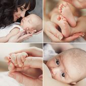 picture of maternal  - Collage  - JPG