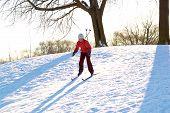 stock photo of nordic skiing  - Girl enjoying cross - JPG