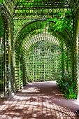 stock photo of royal botanic gardens  - Green archway in a garden - JPG
