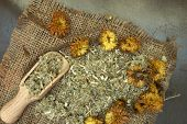 Herbs used in Homeopathy  theraphy with a wooden scoop poster