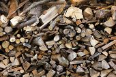 stock photo of firewood  - A stack of dry firewood - JPG