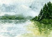 pic of redwood forest  - abstract vector watercolor landscape with river and spruce forest - JPG
