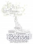 picture of bonsai  - Bonsai theme  - JPG