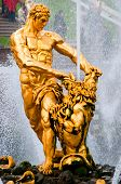 stock photo of samson  - golden statue of Samson in lower park of Peterhof - JPG