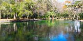 picture of groundwater  - Clear waters of Wekiwa Springs State Park in central Florida - JPG