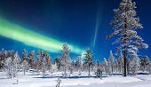 Panoramic View Of Amazing Aurora Borealis Northern Lights Over Beautiful Winter Wonderland Scenery W poster