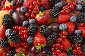 Ripe Blackberries, Blackberries, Strawberries, Red Currants, Peaches And Plums. Mix Berries And Frui poster