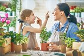 Cute child girl helping her mother to care for plants. Mom and her daughter engaging in gardening ne poster