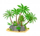Tropical Green Palm And Stones. Jungle Leaves. Coconut Palm, Monstera, Fan Palm, Rhapis. Natural Lea poster