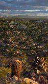 Desert life in Phoenix,Az,USA.  View of Pheonix facing South West from Phoenix Mountains Park Recrea poster