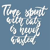 Time Spent With Cats Is Never Wasted - Hand Drawn Lettering Phrase For Animal Lovers On The Dark Blu poster