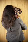 Portrait Of A Red Young Dachshund On The Shoulder Of The Hostess, Young Dachshund Portrait poster