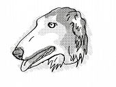 Retro Cartoon Style Drawing Of Head Of A Borzoi , A Domestic Dog Or Canine Breed On Isolated White B poster