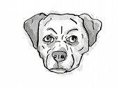 Retro Cartoon Style Drawing Of Head Of A Chug, Pug Chihuahua Pug Mix, Pughuahua, Or Pugwawa, A Domes poster