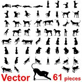 Vector concept or conceptual set,group or collection of black dog silhouette isolated on white backg