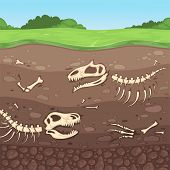 Archeology Bones. Underground Dinosaur Bones Soil Layers Buried Clay Vector Cartoon Illustration. Di poster