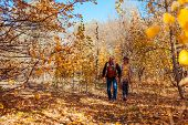 Fall Activities. Senior Couple Walking In Autumn Park. Middle-aged Man And Woman Hugging And Chillin poster