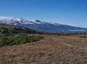 Icelandic Landscape With Red Grass, Birch Bush, Green Hills And Eyjafjallajokull Volcano Glacier. La poster
