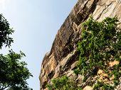 Sigiriya Rock Is An Ancient Fortress In Sri Lanka. Sigiriya Is A Unesco World Heritage Site. This Is poster