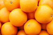 Oranges On Market Stall. Bunch Of Bright Color Oranges. Texture Background Ripe Juicy Fruits Oranges poster