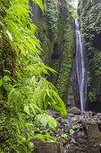 Sekumpul Waterfalls In Bali, Indonesia.waterfall In Green Forest. Triple Tropical Waterfall Sekumpul poster