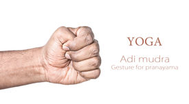 pic of samadhi  - Hand in Adi mudra by Indian man isolated at white background - JPG