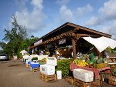 Kahuku Land Farms Roadside Shop