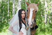 pic of birchwood  - young woman in the dress of fiancee next to a horse by a canicular day in a birchwood - JPG