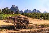 stock photo of chariot  - Chariot with branches in a limestone valley landscape in South China - JPG