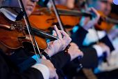 picture of violin  - Violin players close up during a classical concert music - JPG
