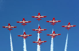 picture of snowbird  - canadian snowbirds flying in diamond formation - JPG