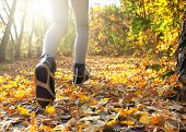 stock photo of crossed legs  - morning run in the autumn forest - JPG