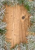 image of blue spruce  - Christmas fir tree on a wooden board - JPG