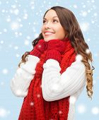 picture of pullovers  - winter - JPG