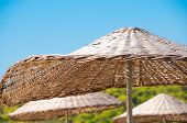 Roof Of Rattan Parasol At  Resort
