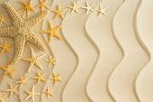pic of echinoderms  - Scattered dried starfish in different sizes arranged to the left side on golden beach sand with decorative wavy lines in a nautical themed background - JPG