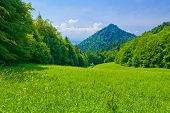 Spring Landscape. Pieniny Mountains.