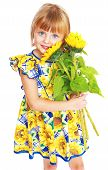picture of child development  - charming girl in a yellow dress with a bouquet of sunflowers isolated on white background - JPG