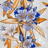 picture of oleander  - Vector Seamless pattern with Oleander flower - JPG