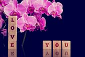 image of heartfelt  - Love You message on wooden alphabet blocks with a beautiful fresh bouquet of pink phalaenopsis orchids on a black background with copyspace for an anniversary or Valentines Day - JPG