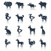 stock photo of cattle dog  - Farm animals livestock cattle and pets icons black set isolated vector illustration animals set black - JPG