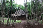 image of mud-hut  - Traditional Ethiopian house. Omo Rift Valley. Ethiopia. Africa