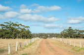picture of windmills  - Fenced gravel road leading over hill to windmill on Australian farm - JPG