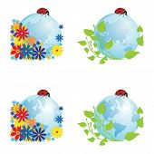 picture of eastern hemisphere  - vector set with illustrations of globe with ladybird - JPG