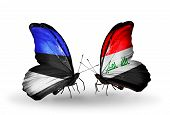 stock photo of iraq  - Two butterflies with flags on wings as symbol of relations Estonia and Iraq - JPG